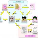WANPA WORLD キャラクター相関図